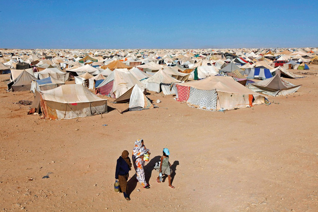 westernsahara4