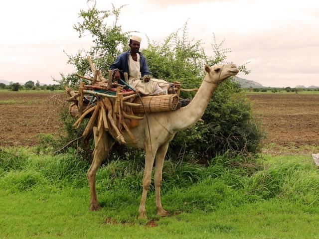 Sudan-tour-11