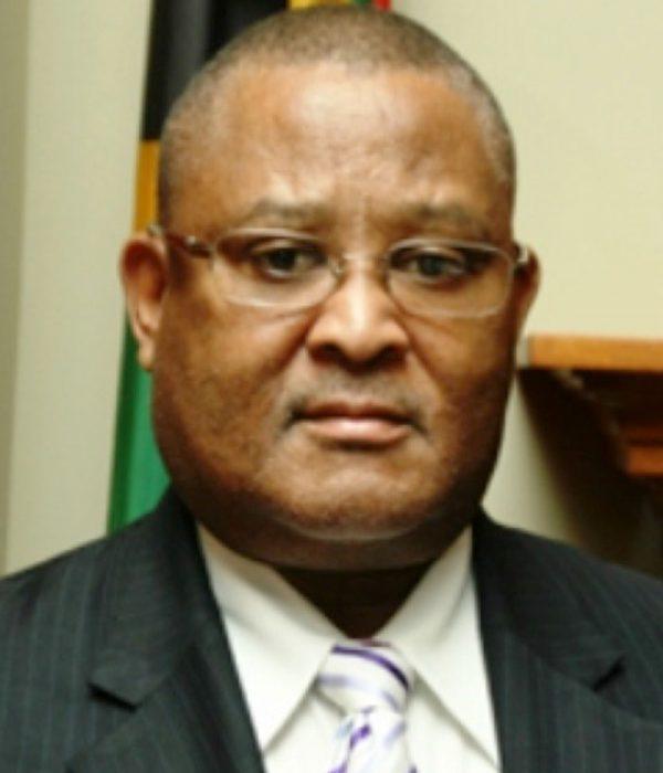 Welile Nhlapo